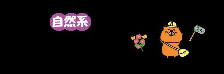 幼稚園選び診断ナビ